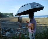 Celene Farris, A Maine Artist